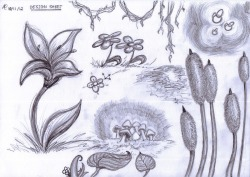 Plants Design Sheet